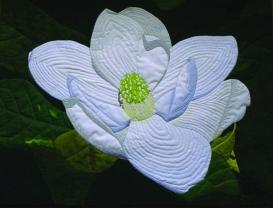Magnificent Magnolia : 37x28