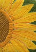 Show Off-Sunflower : 8x10 : 2013
